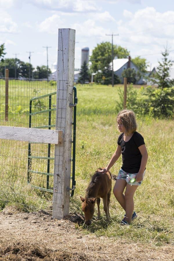 Маленькая девочка petting миниатюрный коричневый осленок стоковые изображения