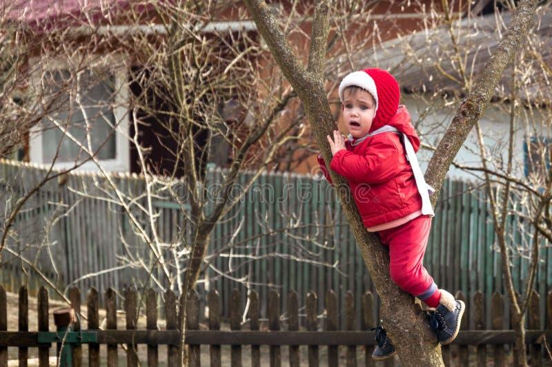 Маленькая очаровательная девушка в красном цвете одевала на дереве между 2 ветвями стоковая фотография