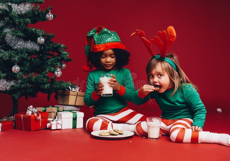Маленькие девочки есть печенья сидя около рождественской елки стоковое изображение rf
