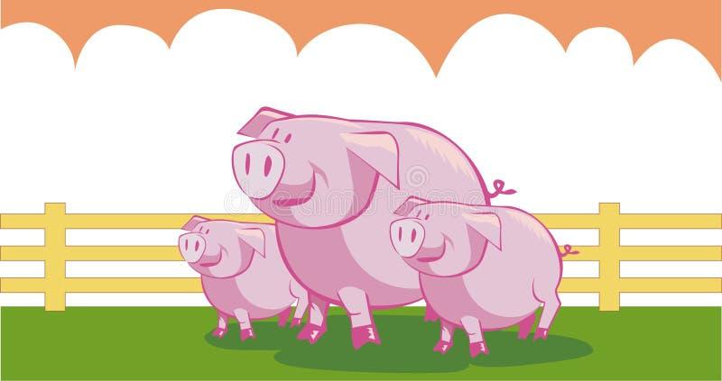 маленькие свиньи 3 бесплатная иллюстрация