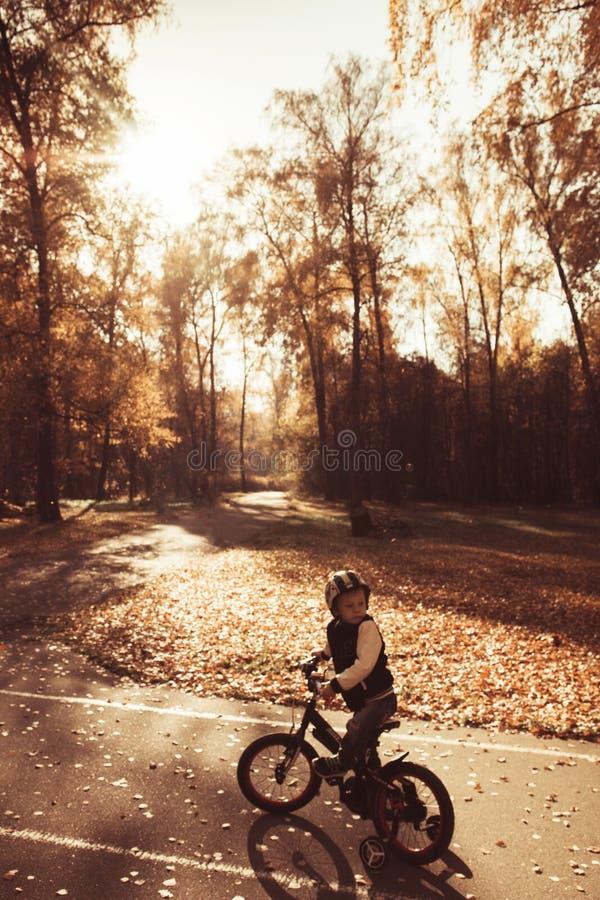 Маленький велосипедист, мальчик в шлеме ехать велосипед в парке осени, ландшафте осени стоковое изображение