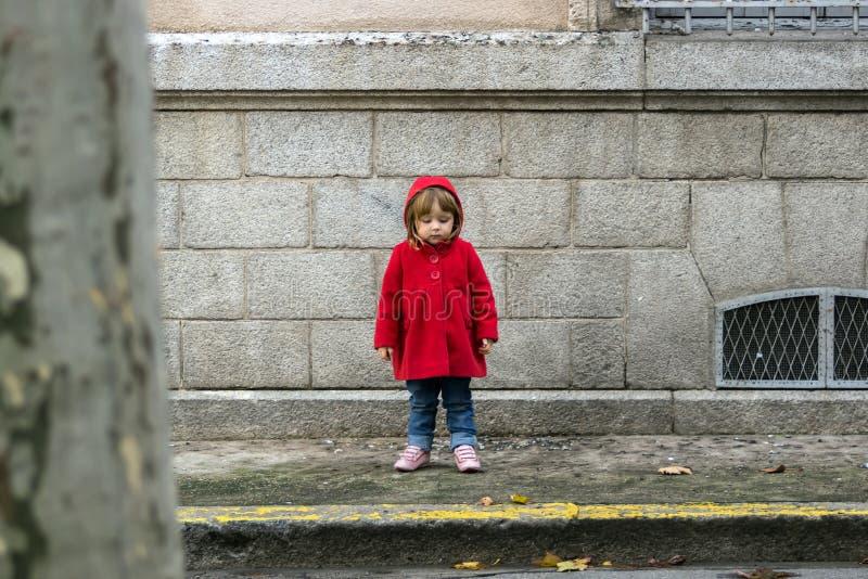 Маленький ребенок в красном пальто стоковое фото rf