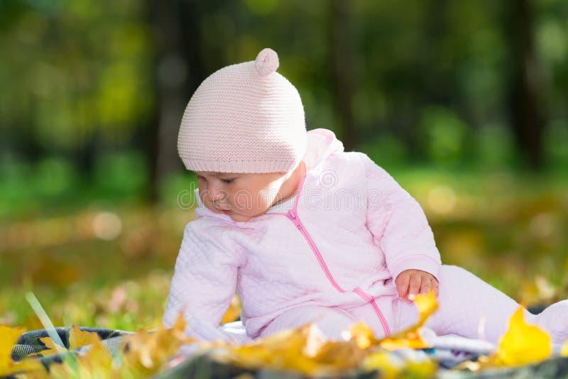 Маленький ребёнок играя с листьями осени стоковая фотография rf
