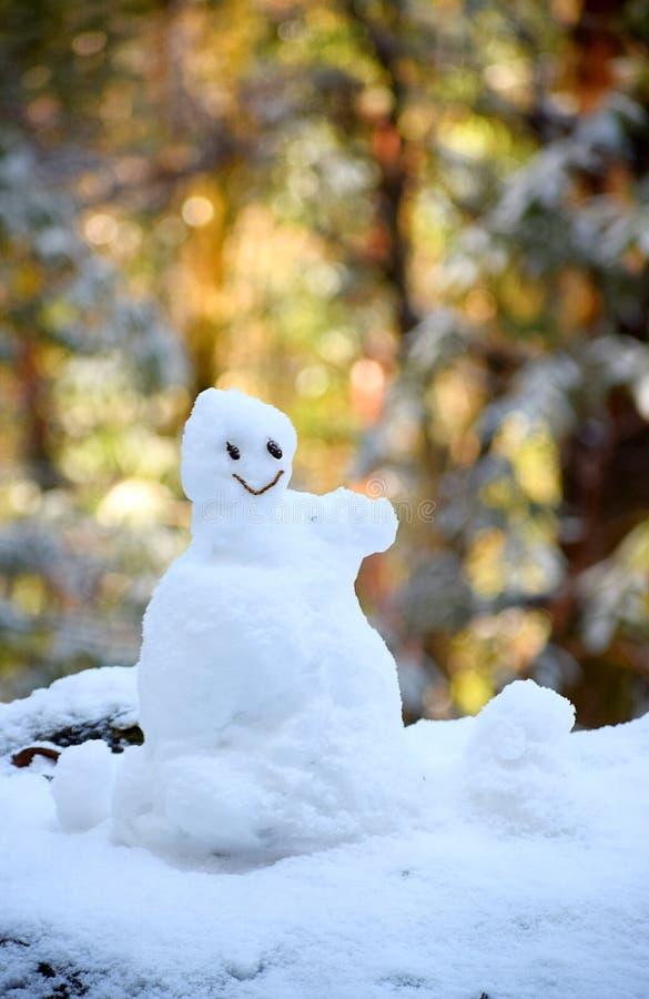 Маленький снеговик - утеха, счастье, и усмехаясь сторона - положительные эмоции и ориентация стоковые изображения rf