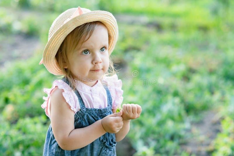 Маленький фермерский ребенок - прекрасная девушка с овощами стоковые изображения rf