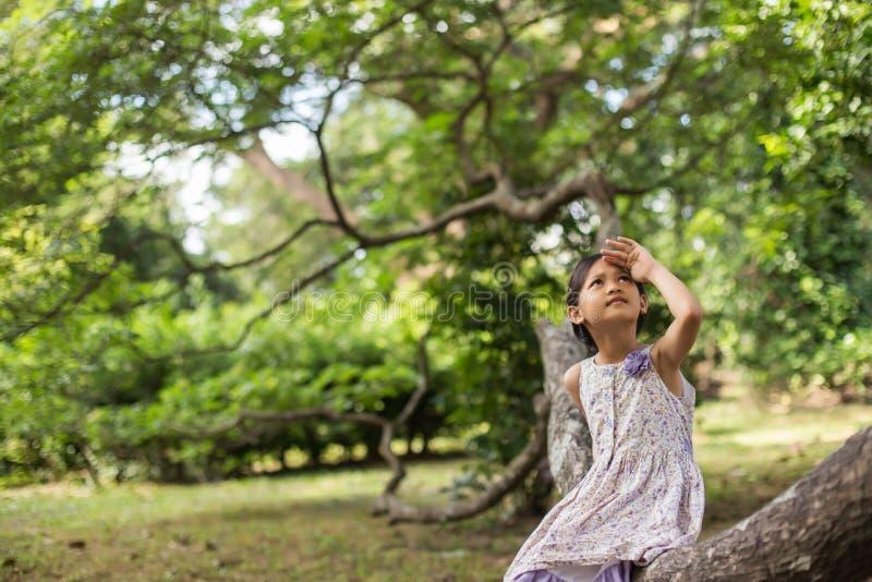Маленькое милое азиатское положение девушки среди пурпурного дня солнечности поля цветка Свобода наслаждаясь с природой стоковые фотографии rf
