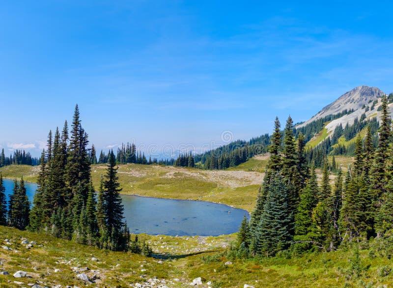 Малое озеро в альпийской среде стоковая фотография