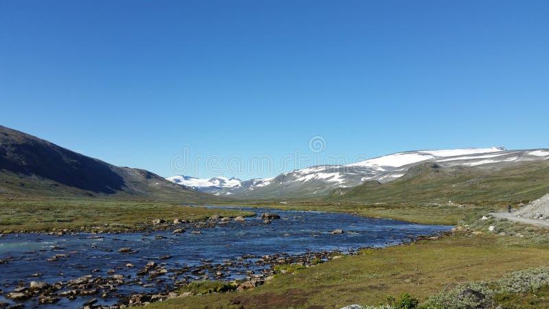 Малое река в jotunheimen Норвегии стоковое фото