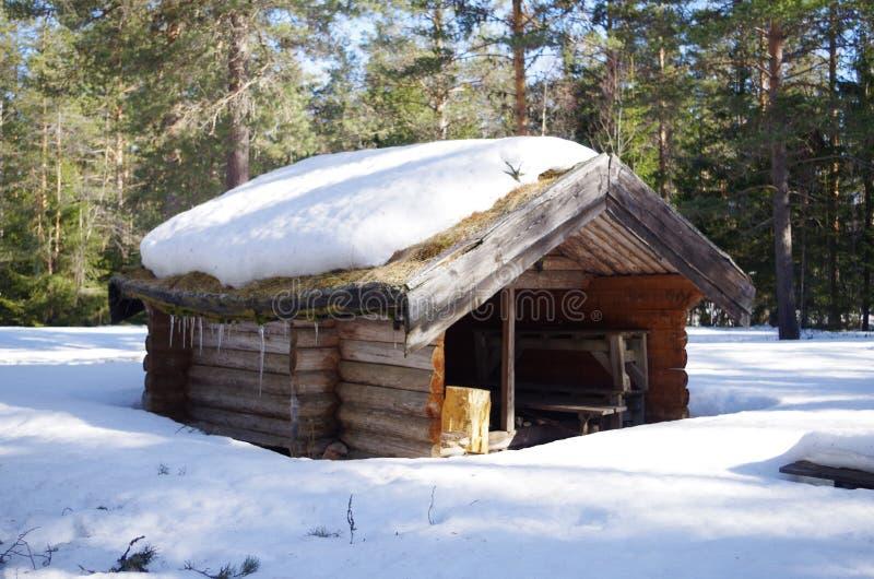 Малое укрытие в лесе стоковая фотография rf