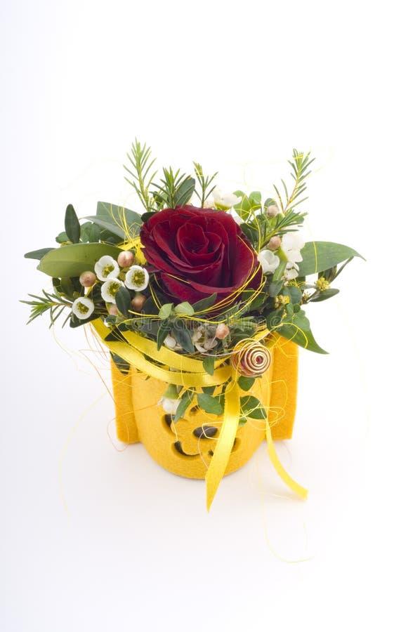 малое цветка присутствующее Стоковое фото RF