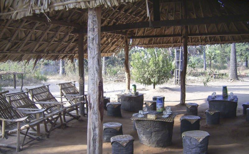 малый бар в джунглях стоковые изображения rf