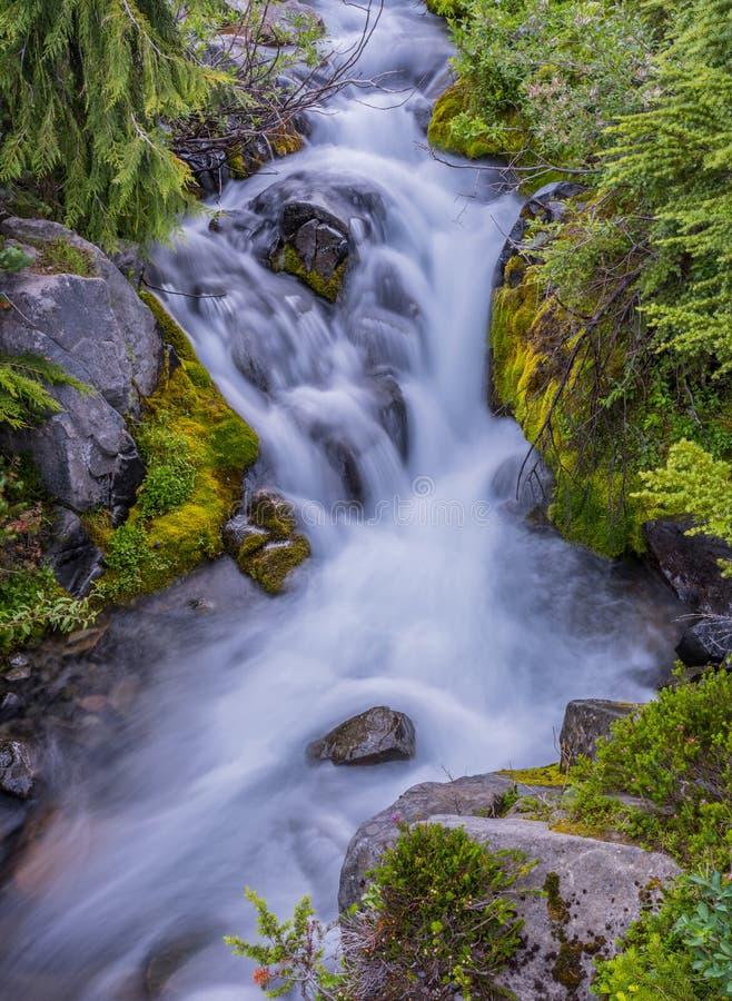 Малый водопад вдоль реки рая стоковая фотография rf