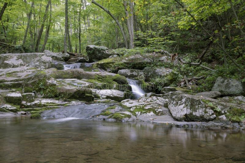 Малый водопад в национальном парке Shenandoah стоковое фото