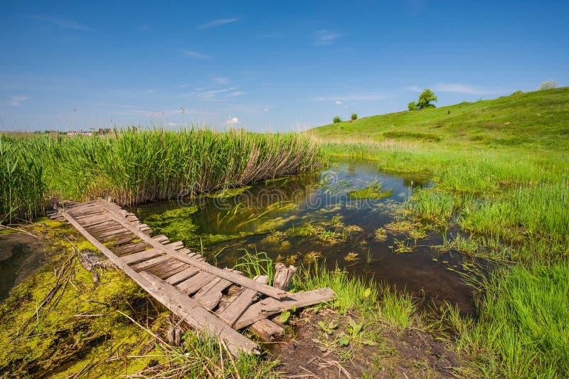 Малый деревянный мост стоковое фото rf