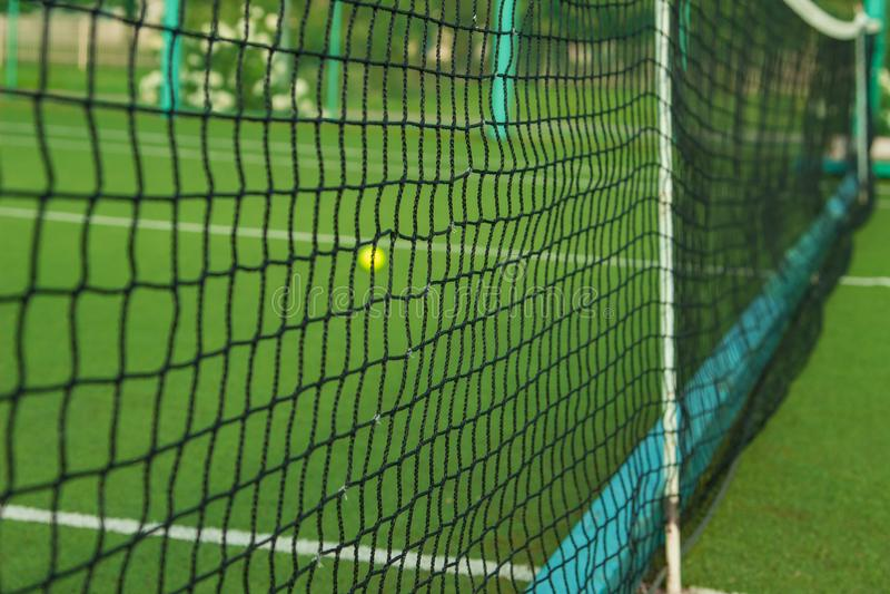 Малый зеленый теннисный мяч лежит за решеткой стоковое фото