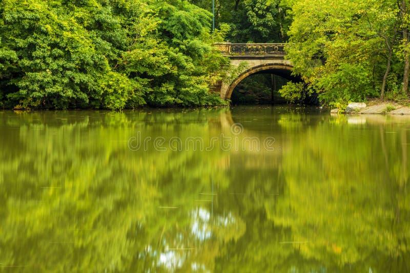 Малый каменный мост в Central Park стоковые изображения rf