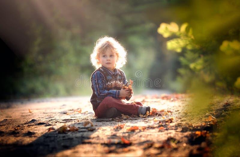 Малый мальчик играя в внешнем в осеннем свете стоковая фотография