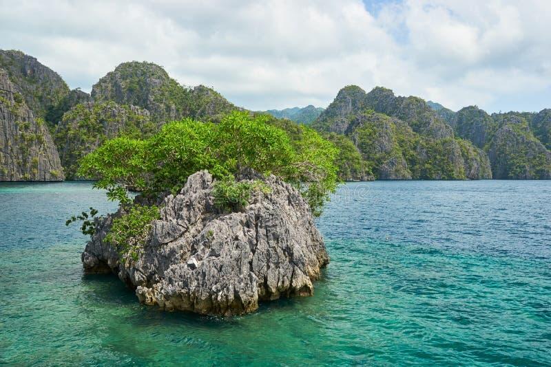 Малый островок около острова Coron, Филиппин стоковое фото