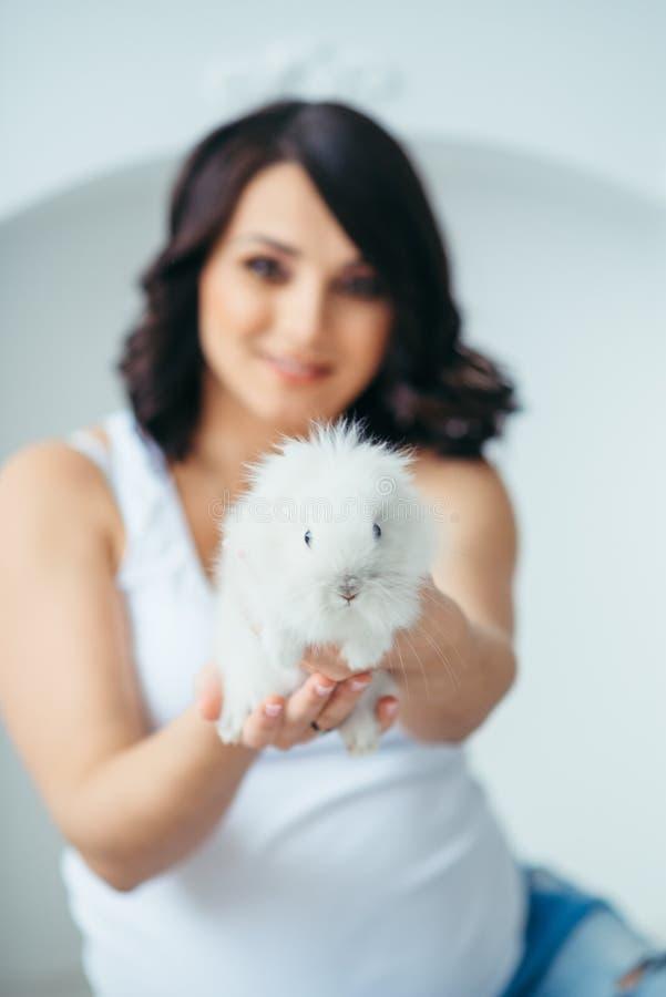 Малый симпатичный белый пушистый кролик в руках красивой усмехаясь беременной женщины на запачканной предпосылке Конец-вверх стоковые фото