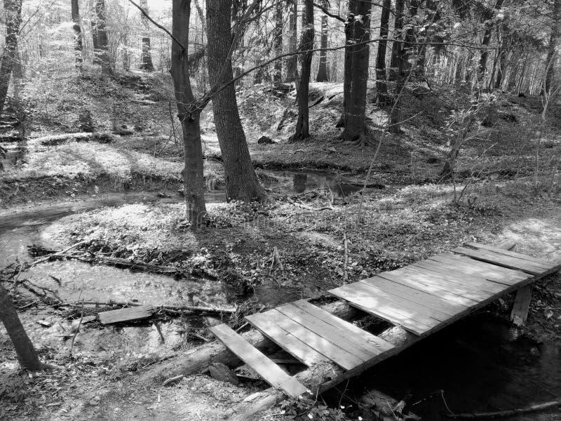 Малый footbridge в природе стоковая фотография