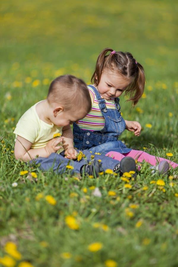 Малыши в поле стоковые фотографии rf