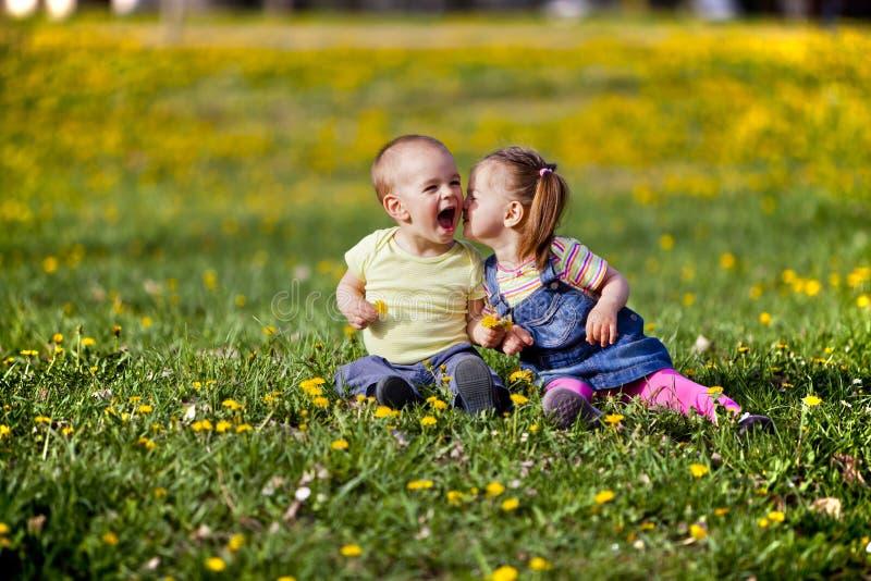 Малыши в поле стоковое фото rf