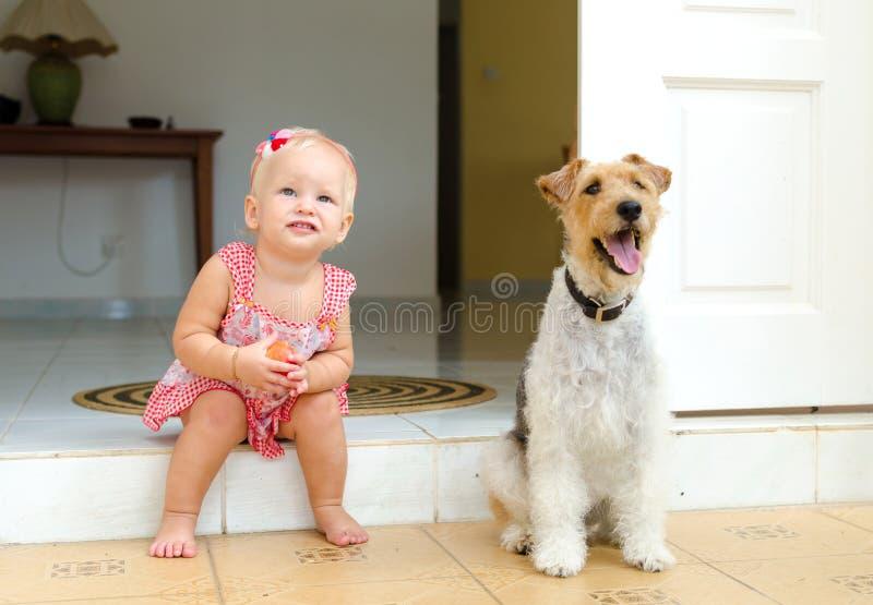 Малыш и собака Маленькая девочка и ее любимчик стоковые фото