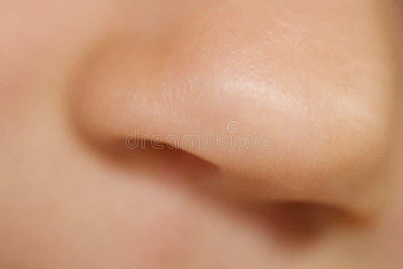 малыш носа стоковое фото