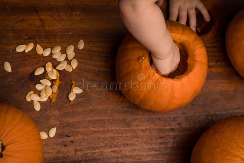 Малыш принимая вне семена тыквы стоковое изображение rf
