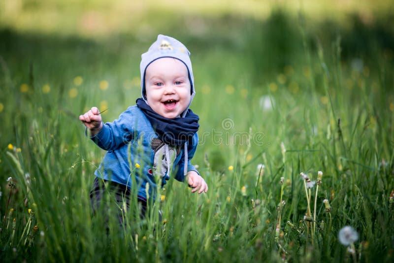 Малыш ребенк в играть травы пряча стоковая фотография rf
