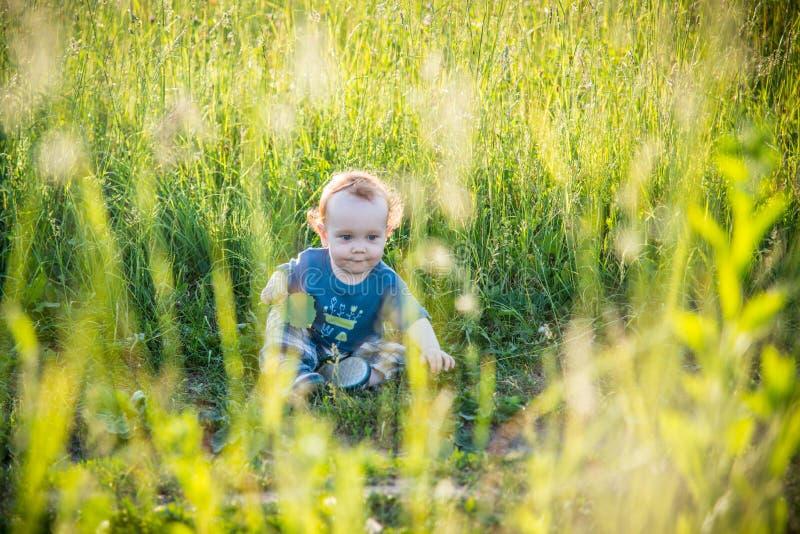 Малыш ребенк в одичалом луге стоковая фотография rf