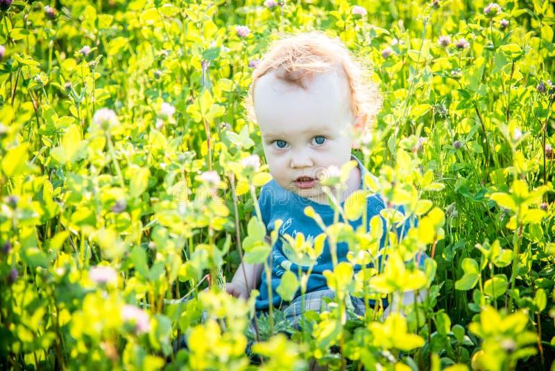 Малыш ребенк в одичалом луге стоковое изображение rf