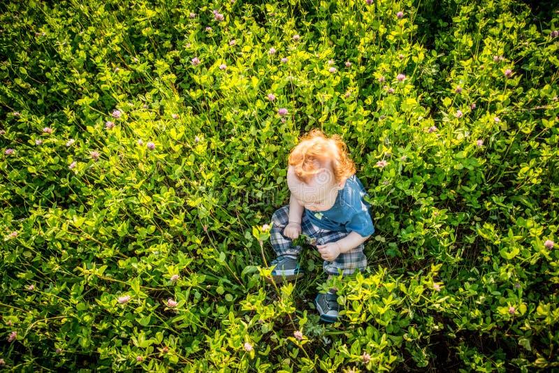 Малыш ребенк в одичалом луге стоковая фотография