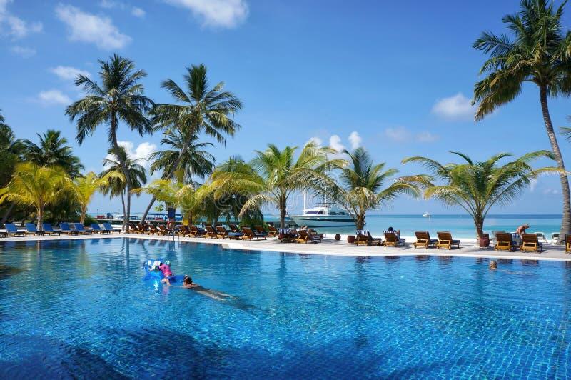Мальдивы - 17-ое января 2013: Люди плавают в водном бассейне тропическим пляжем океана с пальмами и креслами для отдыха кокоса ид стоковое изображение