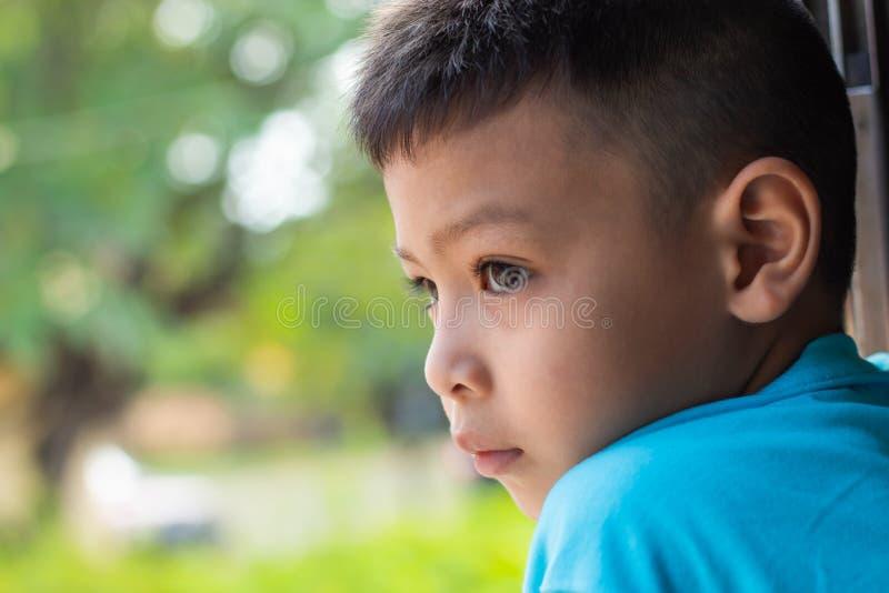 Мальчики наблюдают взгляды окна поезда стоковые изображения