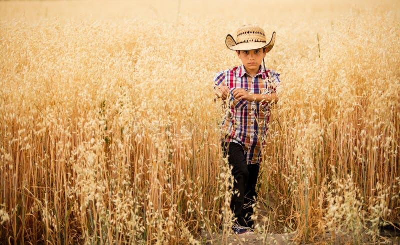 Мальчик в поле овса стоковые фото