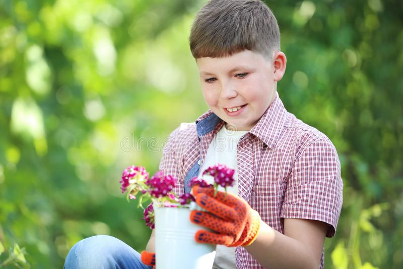 Мальчик держа ведро с цветками стоковые фотографии rf