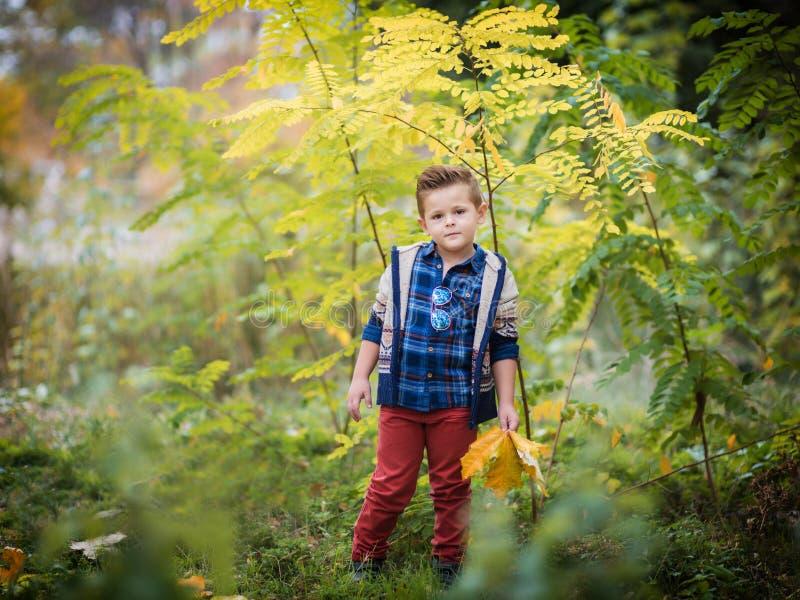 Мальчик играя в желтой листве Осень в парке города стоковое изображение