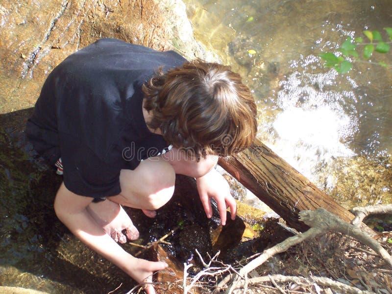 мальчик играя детенышей потока стоковое изображение rf