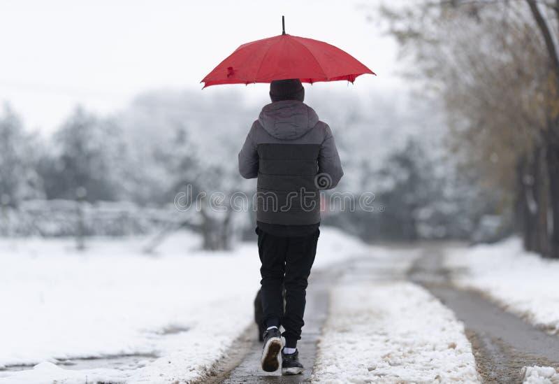 Мальчик идя вниз с снежной улицы стоковое фото
