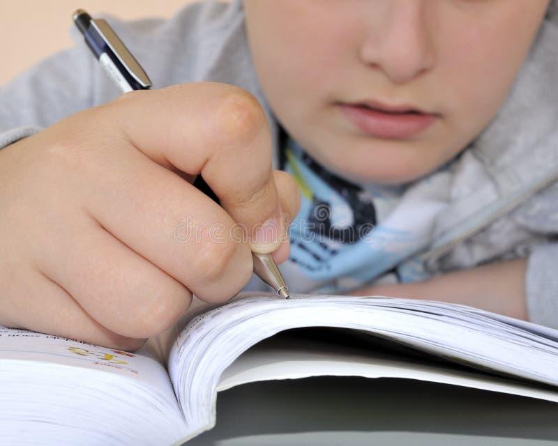 мальчик изучая детенышей стоковое изображение