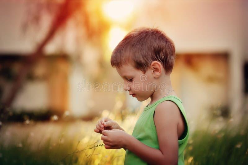 Мальчик и ящерица стоковая фотография rf