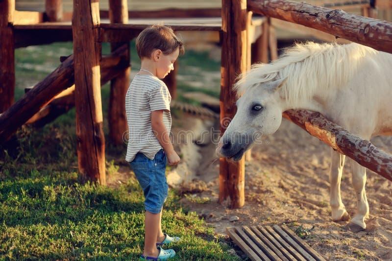 Мальчик на ранчо стоковые изображения rf