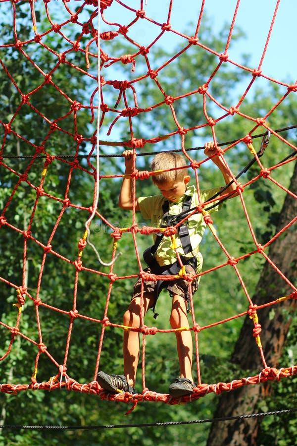 Мальчик преодолевая полосу препятствий в парке веревочки стоковые фото