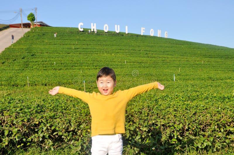 мальчик ребенк в желтом фронте кардигана чая Choui Fong зеленого стоковое изображение rf