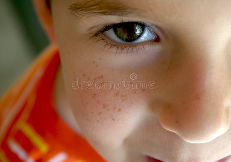 мальчик смотрел на веснушку стоковое изображение rf