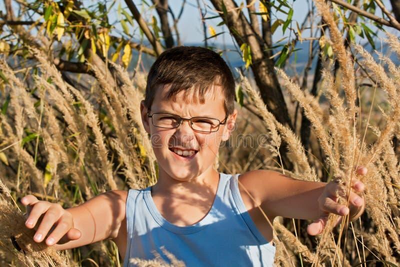 Мальчик среди тростников стоковое изображение