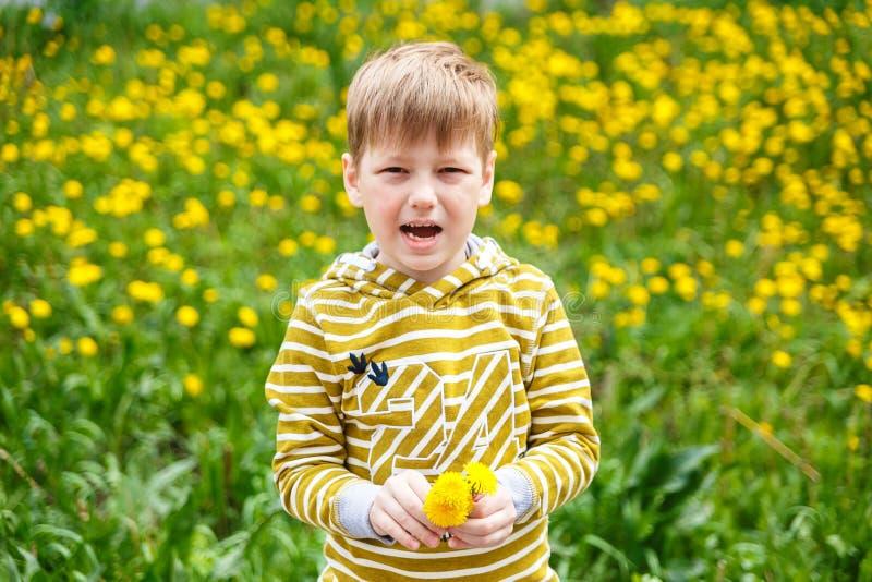 Мальчик стоя на одуванчиках лужайки стоковая фотография rf