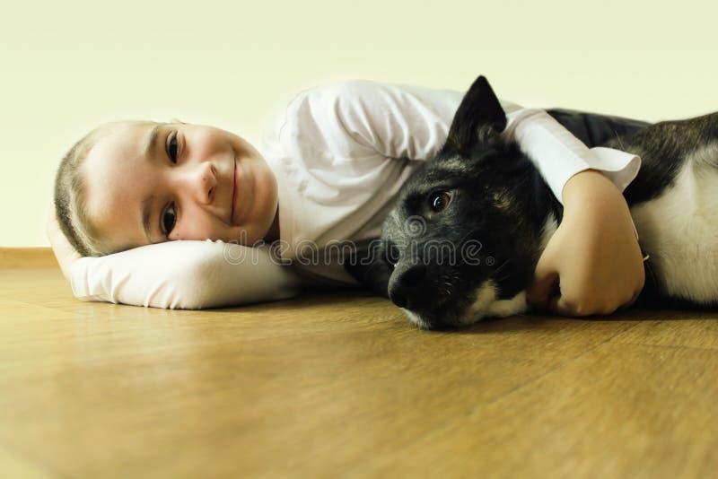Мальчик с собакой приятельство стоковые фотографии rf