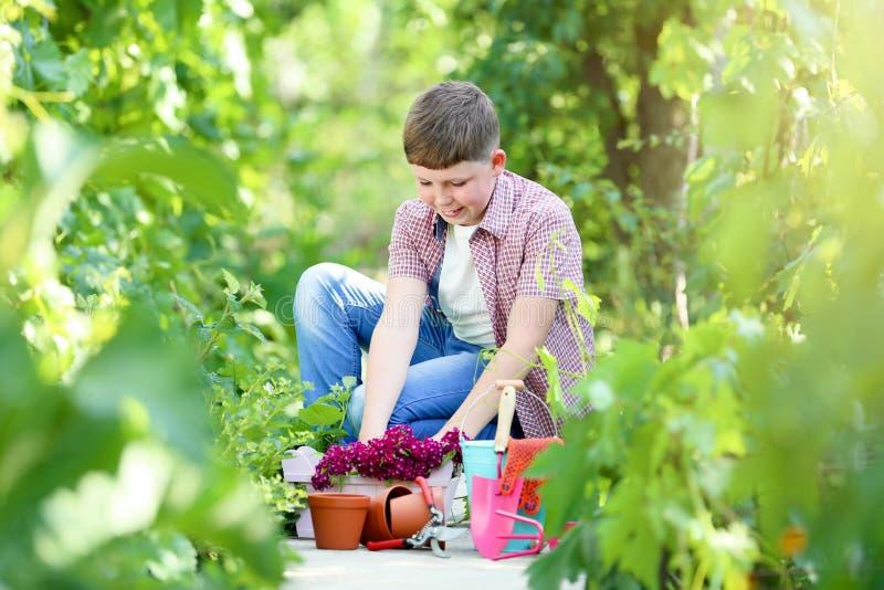 Мальчик с цветками и инструментами стоковые фотографии rf